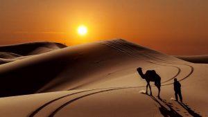7 Wasiat Rasulullah Saw. Kepada Abu Dzar Al-Ghifari